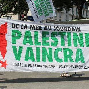 BDS #tapourim flag